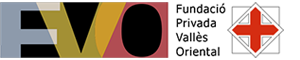 fvo300x601-300x60-1